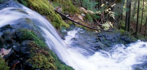 Male Hidroelektrarne Ekoglobal