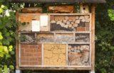 Gnezdilnica za čebele v petih korakih