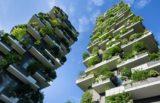 Svetovna finančna mreža za zelen planet