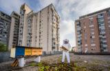 Urbano čebelarstvo ni od včeraj