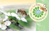 Zakaj je 20. maj svetovni dan čebel?